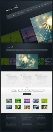 Wordpress - ����� �� 79 ������������� �������� (Elegant Themes)