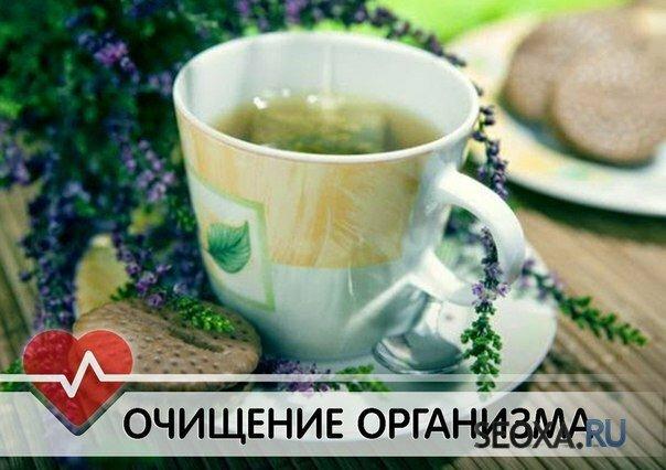очищение организма содой в домашних условиях отзывы
